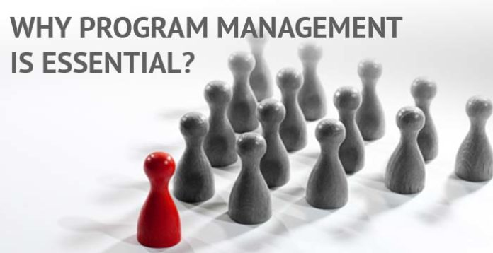 Why Program Management is Essential for an Organization