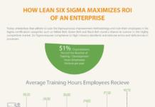 How Lean Six Sigma Maximizes ROI of an Enterprise