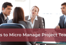Tips to Micro Manage Project Teams